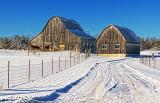 Snowscape 20823