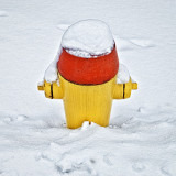 Snow-Capped Hydrant 20120118