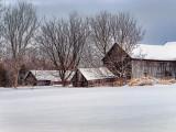 Snowscape 20120121