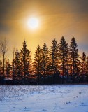 Sun Over Pines 20120122