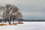 Frozen Lower Rideau Lake 20120131
