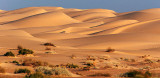 Imperial Sand Dunes 26532