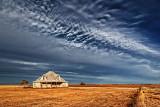 Texas High Plains 71715