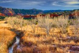Palo Duro Canyon 33037