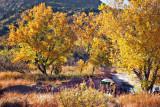 Palo Duro Canyon 72056
