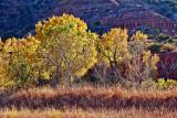 Palo Duro Canyon 72076