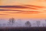 Sunrise Fog 20120324