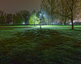 Park At Night 00274