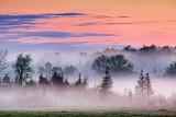 Fog At Sunrise 23682-3