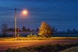 Corner Light 23604-6