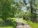 Country Lane 00672