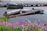 Boats & Flowers 24222-5