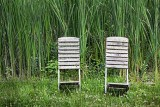 Old Chairs Beside Tall Grass 25134