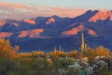 Tucson Mountains Sunrise 77570