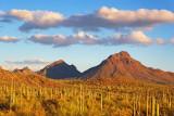 Tucson Mountain Park 76275