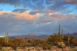 Desert At Sunrise 20071227