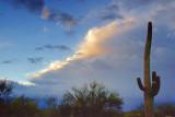 Evening Thunderhead 76786