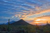 Desert Sunrise 20071229