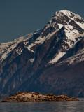glacier_bay_may_2011