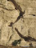20100801 084.jpg