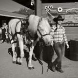 Proud Owner & Draft Horse