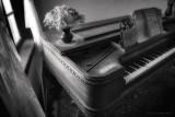 Window Light on Piano