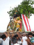 Gajamukha, 1st manifestation of Surapadman, approaches Lord Murugan. Skanda Sashti at Tiruchendur.
