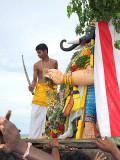A young priest, representing Lord Subramanyam (Murugan), beheads the demon Gajamukha. Skanda Sashti at Tiruchendur.