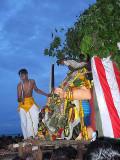 The young priest symbolically kills the cock, the demon`s spirit. Skanda Sashti at Tiruchendur.