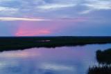 twilight in the spartina marsh