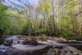 otter creek, april 2012