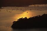 Marin Sunset