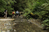 Hiking back in the creek