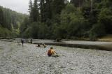 Crossing the creek again
