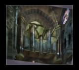 the organ.jpg