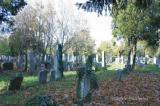 Zentralfriedhof 017.jpg