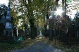Zentralfriedhof 067.jpg