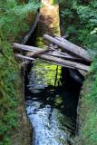 Tunnel Falls Hike