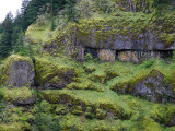 columbia gorge basalt cliffs