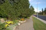 Burn Memorial Park