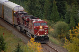 Canadian Pacific Train near Bow river