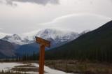 Icefield Highway Jasper