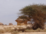 Madain Saleh