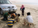 children play the sand