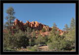 Red Canyon #13