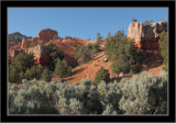 Red Canyon #14