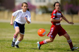 Avalanche Soccer - Consolidated