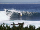 Monterey16_29