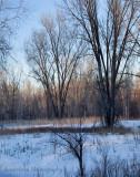 plum creek basin