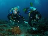 Ingrid en Ronny3.JPG
